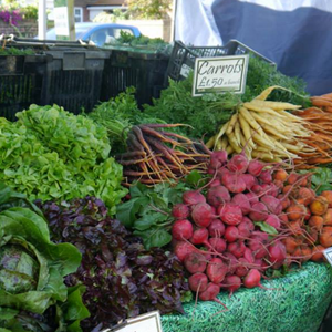 Our Market, Ripley Farmers Market