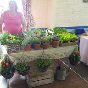 Plants at Acle Farmers' Market