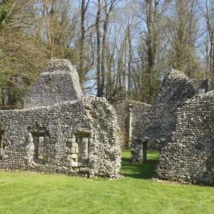 The ruins of St Johns House