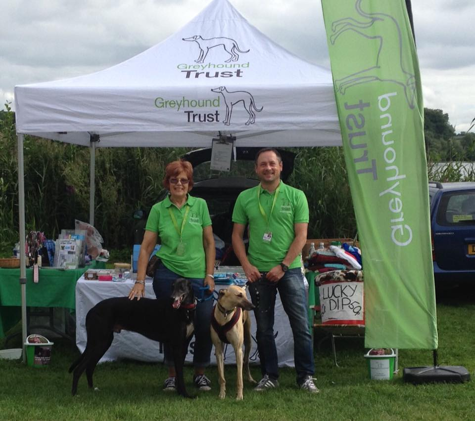 Volunteer and Hounds at Moreton Park