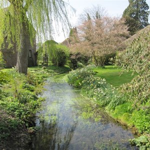River Lavant  Singleton 18th April 2010