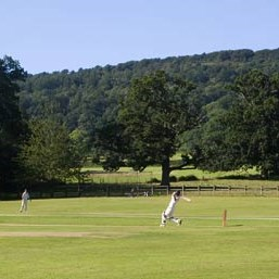 Cricket in West Bagborough