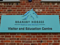 Bransby Horse Rescue