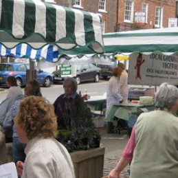 Gallery, Thames Valley Farmers Market Co-operative