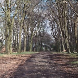 Carriage drive to Anderton Hall