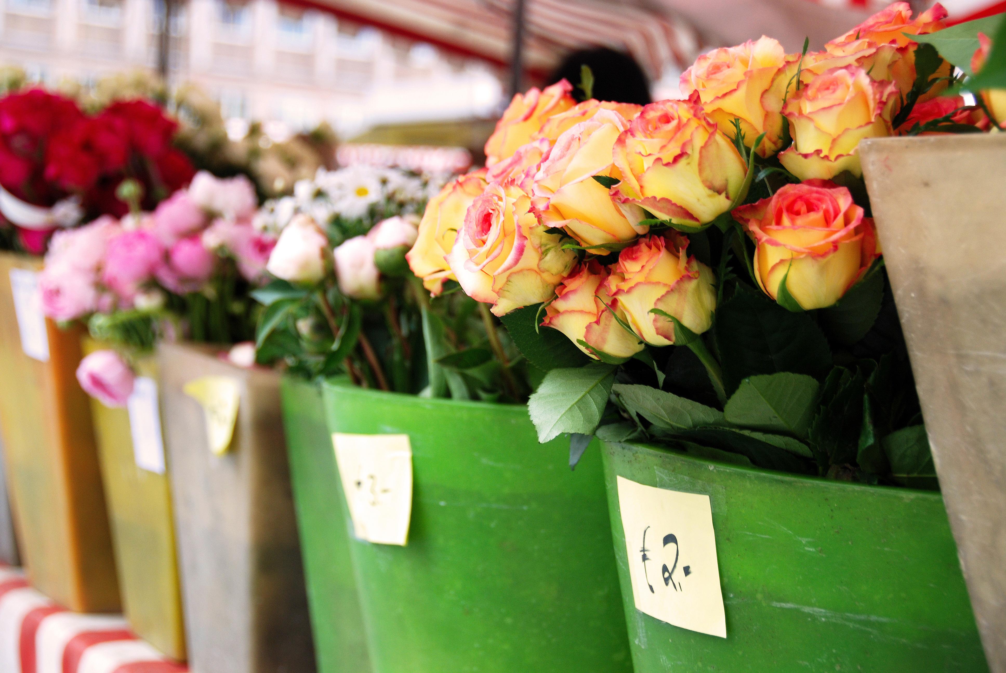 Как организовать бизнес службу доставки цветов и подарков заказ цветов с доставкой в волгограде
